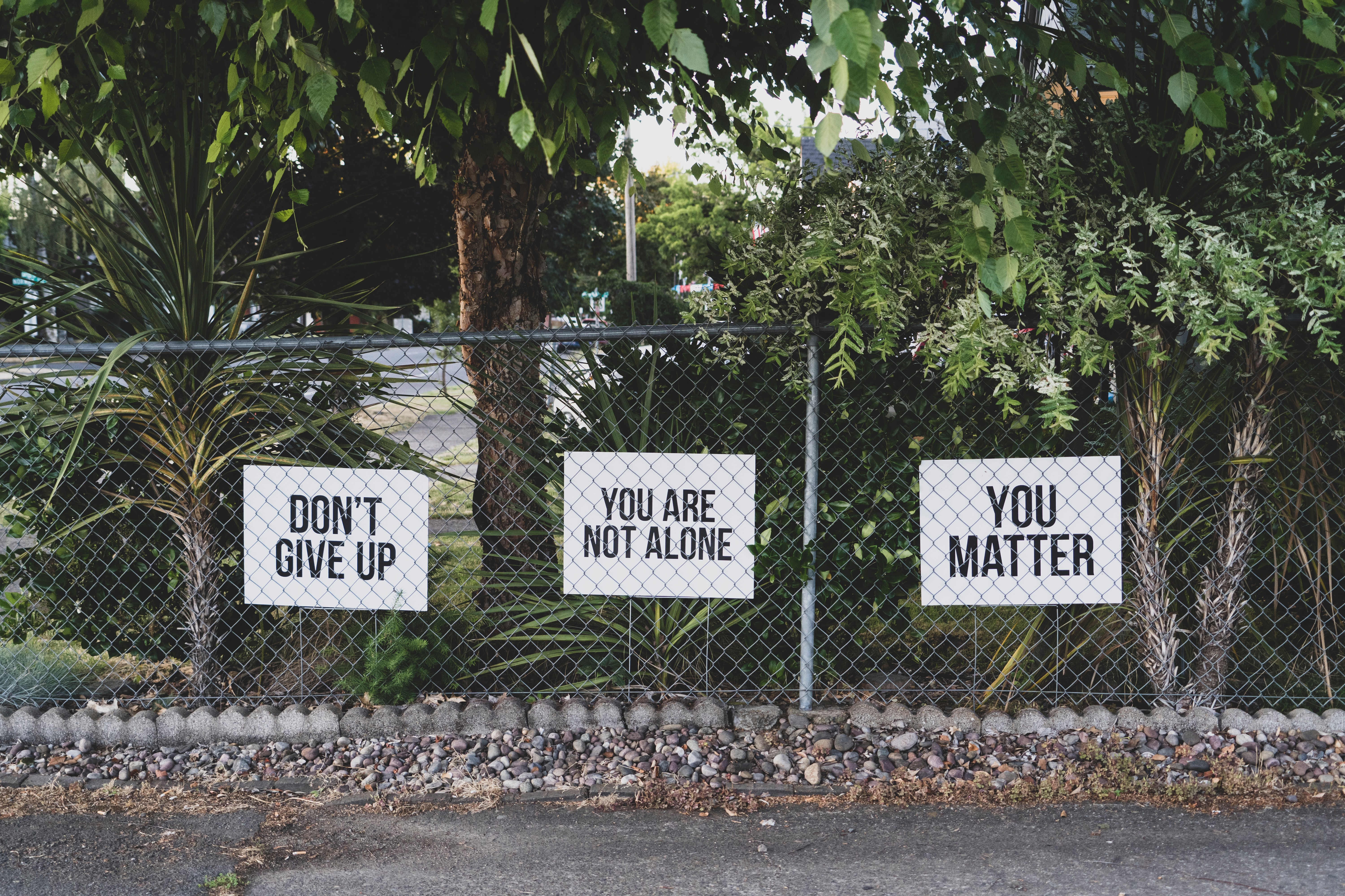 "Metal fence in front of foliage with motivational signs hanging, which read ""don't give up,"" ""you are not alone,"" and ""you matter."""